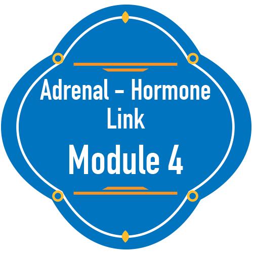 adrenalhormonelink-module4