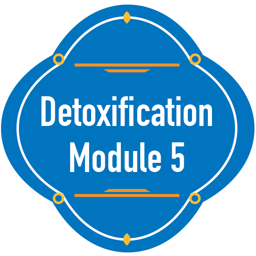 detoxification-module5