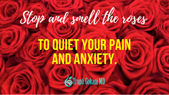 Why Do You Need to Stop and Smell the Roses?